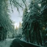 Schwarzwald bei Freudenstadt im Winter