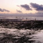 Bild des Watts bei Cuxhaven-Duhnen an der Nordsee Blick auf Neuwerk 1987