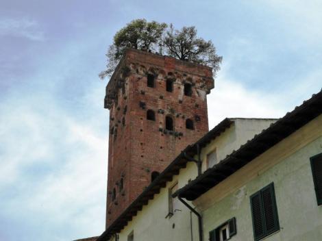 Torre Guinigi (2017)