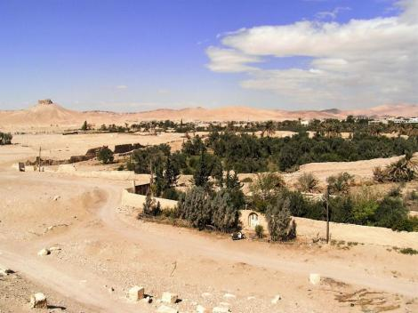 Blick vom Baal-Tempel auf die Oase (2008)