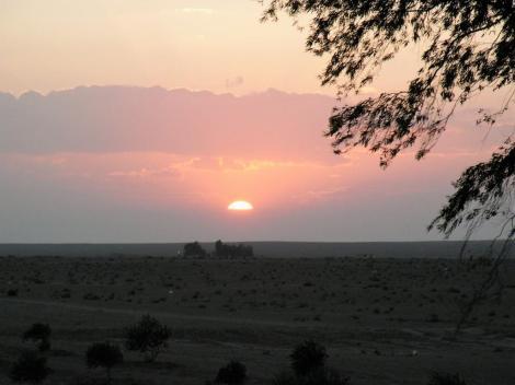 Sonnenuntergang in der syrischen Wüste (2008)