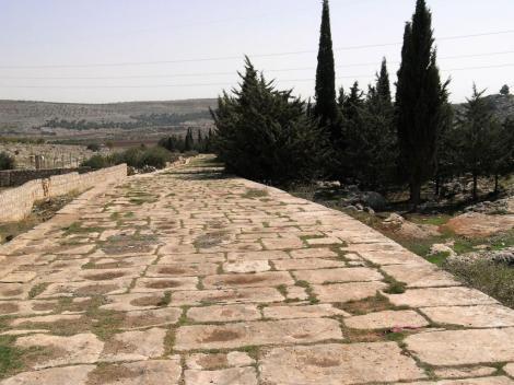 Römerstraße bei Tawamah [westlich von Aleppo] (2008)