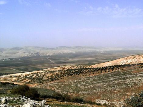 Tal des Flusses Orontes (2008)