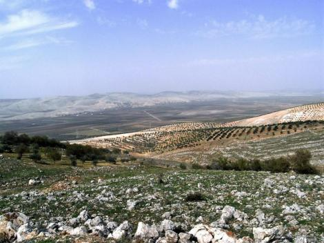 Blick ins Tal des Flusses Orontes (2008)