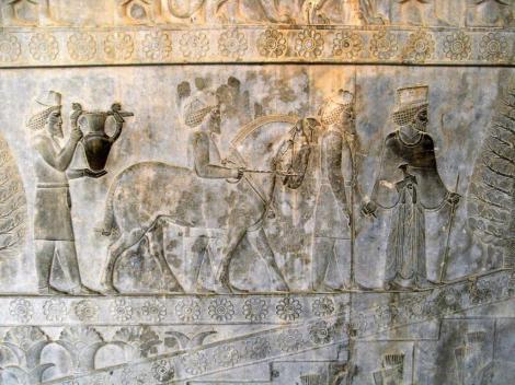 Persepolis: Apadana - Relief an der Osttreppe [Armenier] (2007)