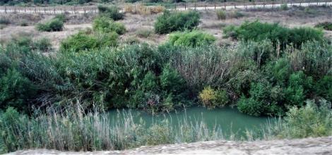 Jordan zwischen Gadara und Pella (2006)