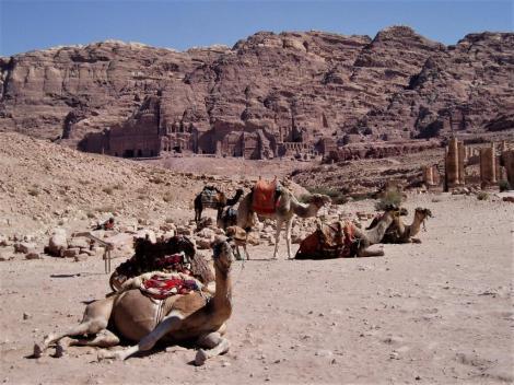 Petra: Blick von der Innenstadt zur Königswand (2006)