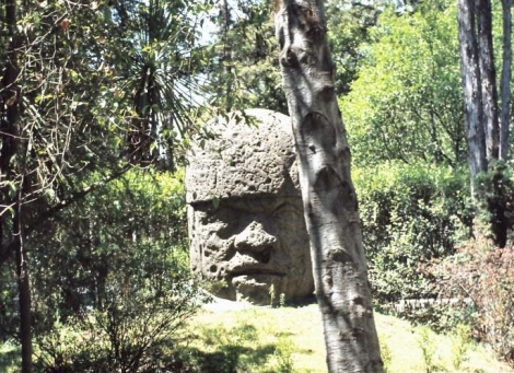 Mexiko-Stadt: Anthropologisches Museum - Olmekenkopf (1980)
