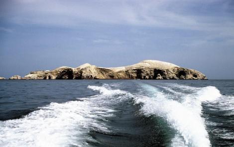 Ballestas-Inseln (2005)