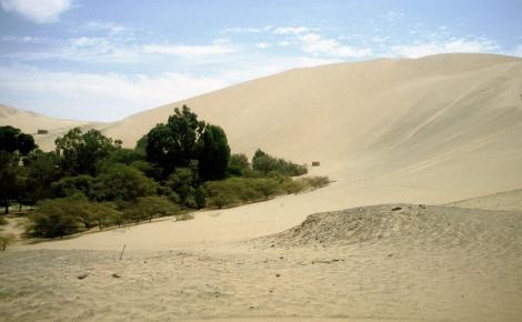 Huacachina: Düne (2005)