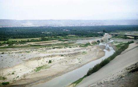 Flussoase südlich Nazca (2005)