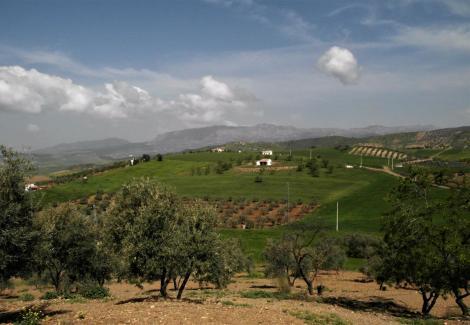 Blick zum El Torcal-Gebirge (2018)