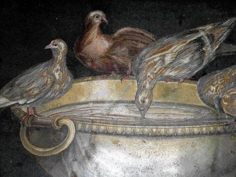 Kapitolinische Museen: Taubenmosaik (2013)