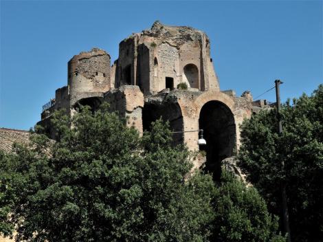 Palatin: Domus Severiana [Blick vom Circus Maximus] (2013)