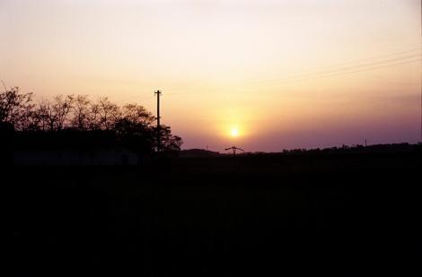 Abendsonne zwischen Oroshaza und Hodmezövasarhely (1983)