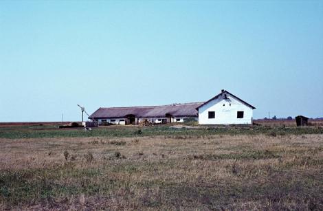 Puszta Hortobagy (1983)