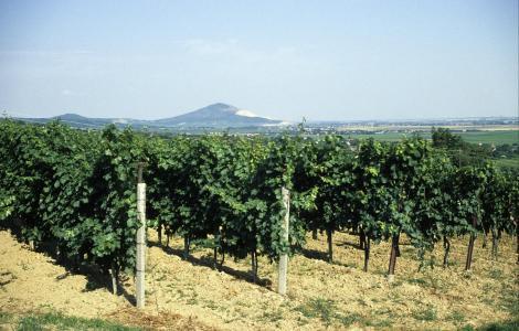 Siklos: Blick zum Berg Harsany (2004)