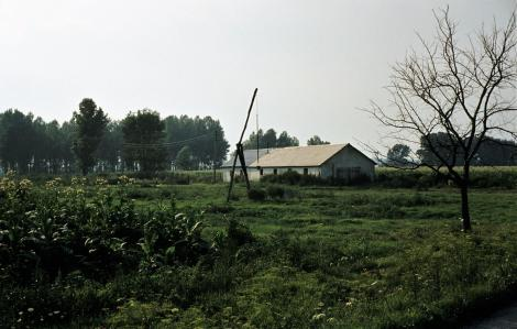 Große Schüttinsel (1980)