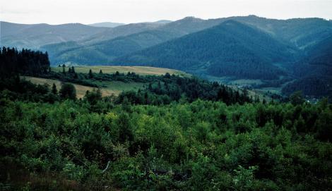 Landschaft bei Schmöllnitz [slowak. Smolník] (2004)