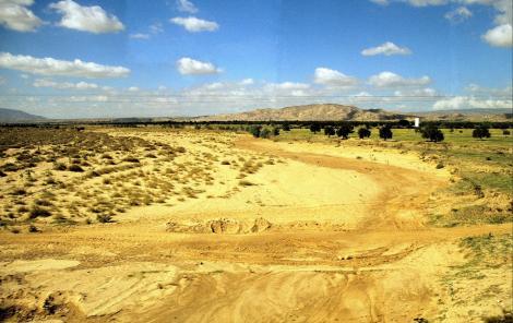 Trockental zwischen Kairouan und Sbeïtla (1998)