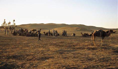 Douz - am Rande der Sahara (1998)
