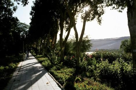 Assuan: Botanischer Garten auf der Kitchener-Insel (1982)