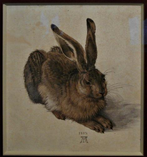 """Wien: Albertina - """"Feldhase"""" von Dürer (2019)"""