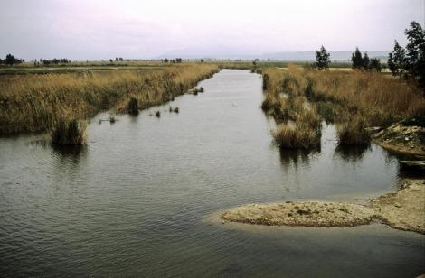 Fluss Mäander bei Milet (1997)