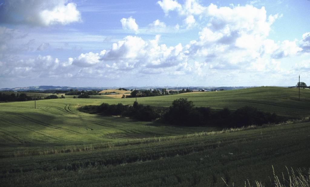 Landschaft bei Snertinge (2001)