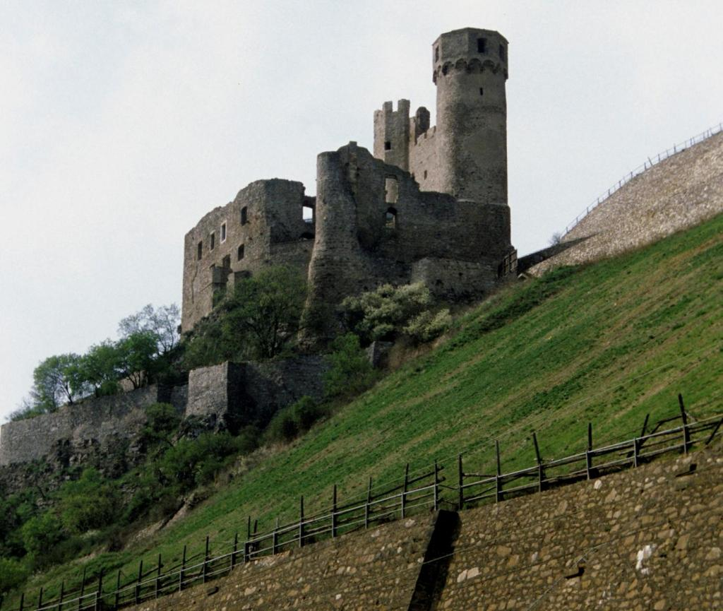 Ruine Ehrenfels (2016)