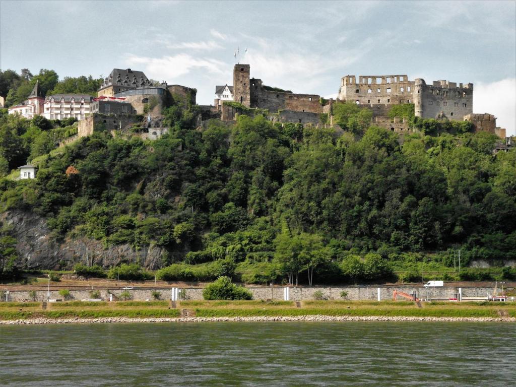 Burg Rheinfels (2020)