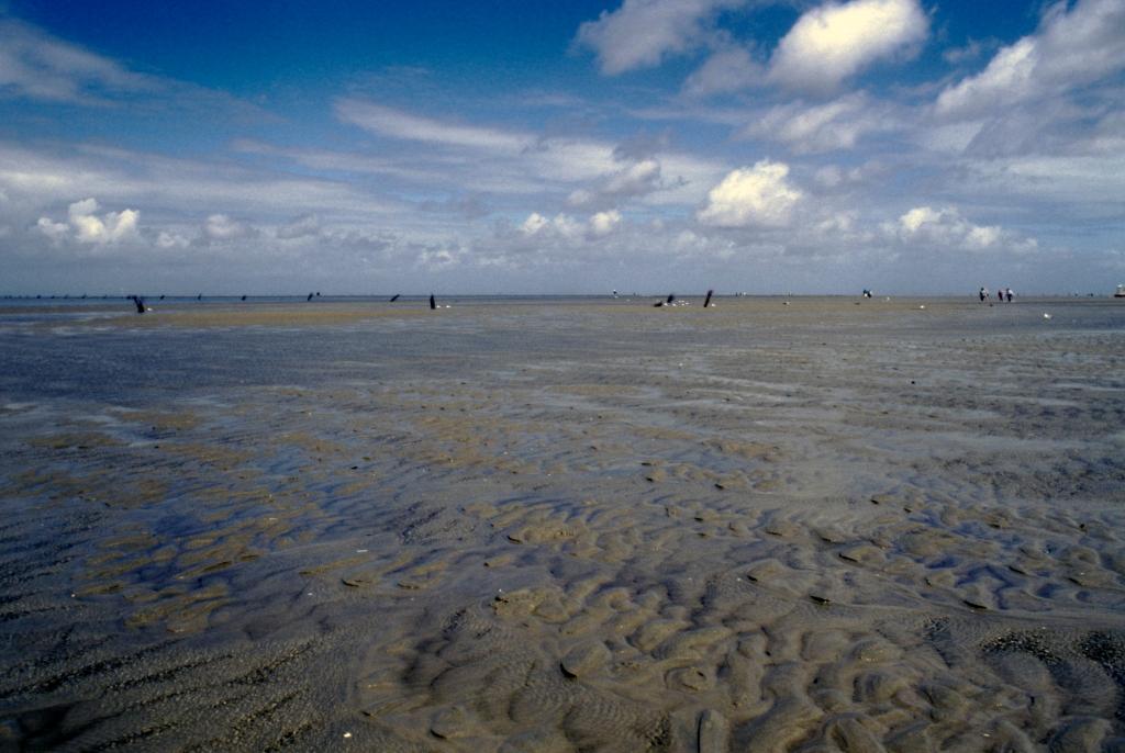 Cuxhaven-Duhnen: Watt (1987)