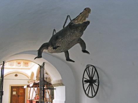 Brünn [tschech. Brno]: Altes Rathaus - Turmdurchgang mit Krokodil und Rad (2008)